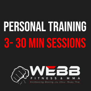 Personal Training 3- 30 min sessions